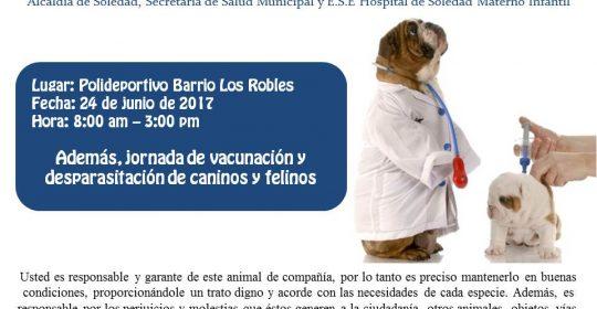 Feria de registro de perros potencialmente peligrosos y vacunación de caninos y felinos